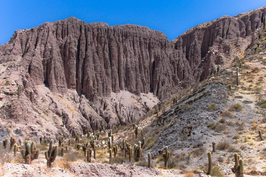 The Cordillera de Humahuaca in the the Northern region of Argentina with steep cliffs and cactus.